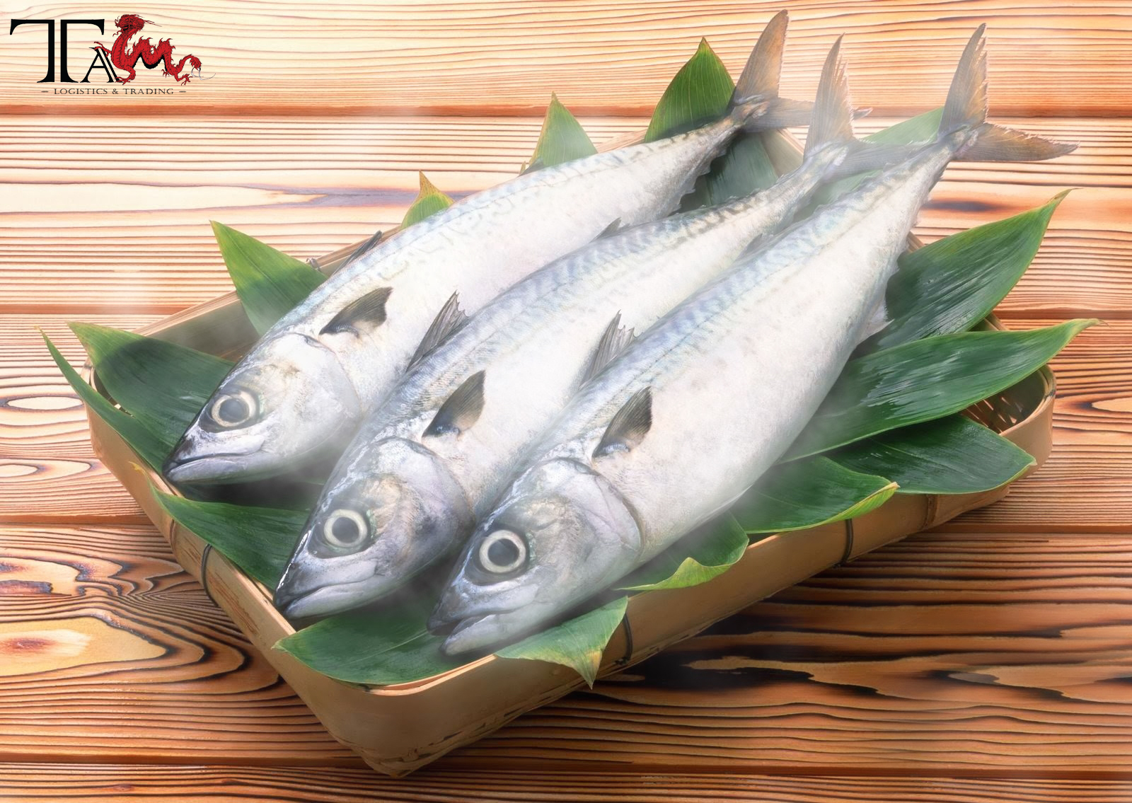 PROCESS OF PROCEDURE FOR IMPORTING FROZEN FISH INTO VIETNAM
